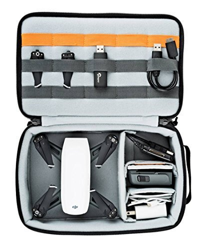 Estuche extraíble Lowepro Viewpoint BP 250 AW